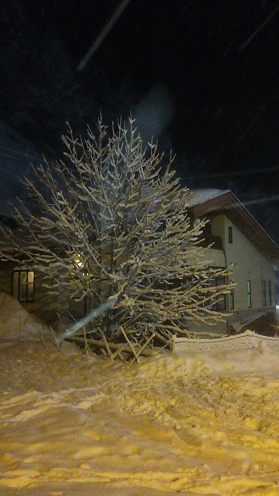 http://www.hirogawara.com/DSC_0828.JPG